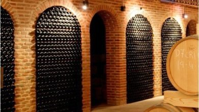 Photo of Proceo's Wines : Offering quality wines & consulting throughout Spain